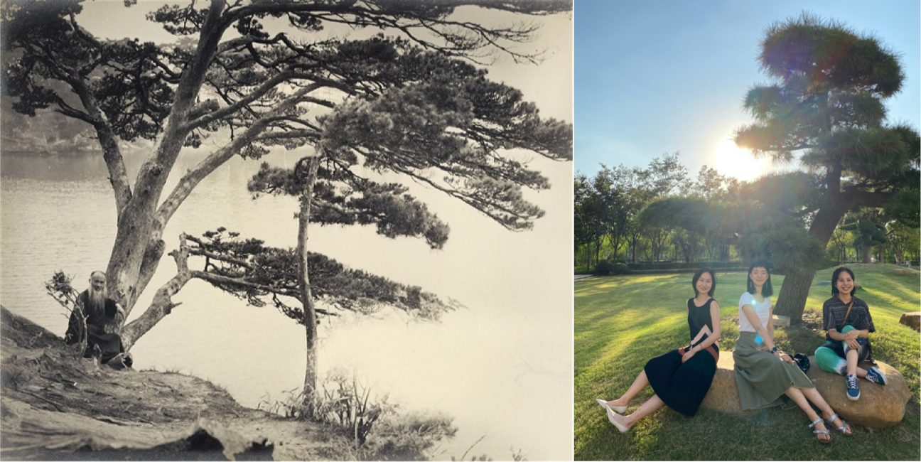 Zhang Daqian, Scholars under the Pine Trees