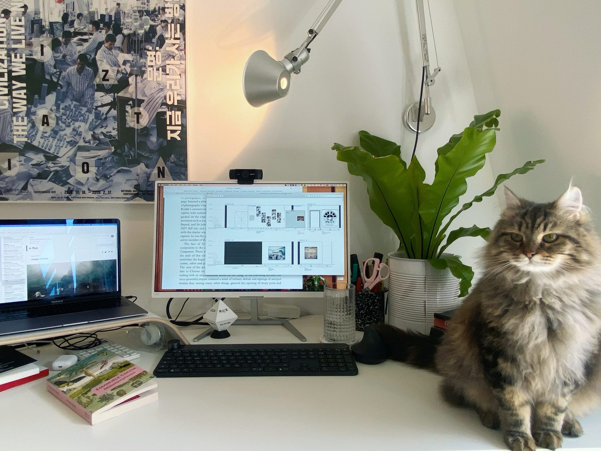 HOLLY ROUSSELL 容思玉 in Lausanne, Switzerland, laptop, cat, WFH, Museum, covid